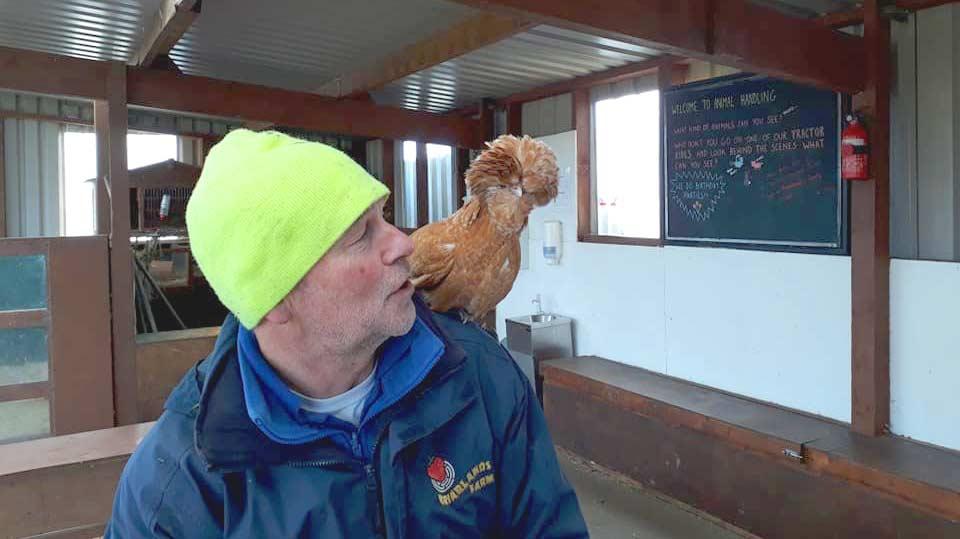 Can you speak chicken?